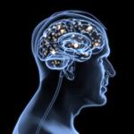 Сlipart Brain Inspiration Thinking Intelligence Action 3d  BillionPhotos