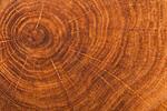 Сlipart Walnut Wood Backgrounds Dark Luxury photo  BillionPhotos