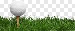 Сlipart Golf Grass Golf Ball Ball Tee photo cut out BillionPhotos