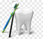 Сlipart Human Teeth Dental Hygiene Dental Equipment Toothbrush White 3d cut out BillionPhotos