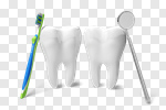 Сlipart Dentist Human Teeth Toothbrush Dental Hygiene White 3d cut out BillionPhotos