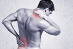 Сlipart Backache Pain Back Rear View Human Muscle   BillionPhotos
