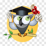 Сlipart Owl Wisdom Education School University vector cut out BillionPhotos