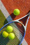 Сlipart Tennis Court Racket Sport Ball photo  BillionPhotos