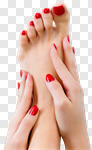 Сlipart spa closeup isolated hands pedicure photo cut out BillionPhotos