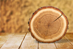 Сlipart Tree Ring Log Wood Tree Trunk Tree   BillionPhotos
