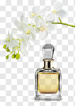 Сlipart Perfume Aromatherapy Orchid Scented Merchandise photo cut out BillionPhotos