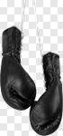 Сlipart Boxing Glove Sports Glove Fighting Hanging Combative Sport photo cut out BillionPhotos