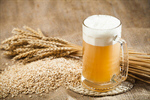 Сlipart Beer Brewery Hop Malt Ingredient photo  BillionPhotos