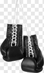 Сlipart Boxing Glove Sports Glove Hanging Isolated Sport photo cut out BillionPhotos