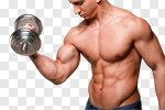 Сlipart Human Muscle Weight Training Body Building Muscular Build Exercising photo cut out BillionPhotos