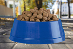 Сlipart Dog Food Pet Food Food Animal Food Bowl Metal   BillionPhotos