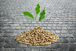 Сlipart pellet wood biomass pile stove   BillionPhotos