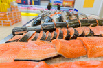 Сlipart Fish Supermarket Market Fish Market Seafood photo  BillionPhotos