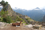 Сlipart Machu Picchu Peru Picchu Inca Mountain photo  BillionPhotos