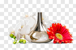 Сlipart Perfume Scented Bottle Single Flower Flower photo cut out BillionPhotos