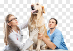 Сlipart veterinarian vet dog latin latinamerican photo cut out BillionPhotos
