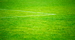 Сlipart Soccer Grass Goal Sport Playing Field photo  BillionPhotos