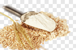 Сlipart Flour Cereal Plant Wheat Whole Wheat Oat photo cut out BillionPhotos