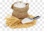 Сlipart Flour Wheat Cereal Plant Whole Wheat Sack photo cut out BillionPhotos