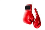 Сlipart Boxing Glove Sports Glove Fighting Hanging Combative Sport photo  BillionPhotos