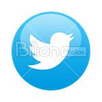 Сlipart Twitter Twitter link Twitter icon Twitter favicon Twitter bird vector icon cut out BillionPhotos