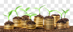 Сlipart investment accounts savings business growth photo cut out BillionPhotos