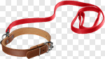 Сlipart Dog Leash Pet Collar Walking Pets photo cut out BillionPhotos