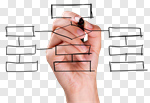 Сlipart Organization Communication Organization Chart Flow Chart Business  cut out BillionPhotos