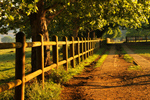 Сlipart Kentucky Horse Ranch Fence Farm photo free BillionPhotos