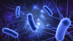 Сlipart Bacterium E. coli Biology Science Microbiology 3d  BillionPhotos