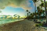 Сlipart mauritius beach sand palm shore photo  BillionPhotos
