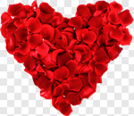 Сlipart Rose Heart Shape Valentine's Day Flower Wedding photo cut out BillionPhotos