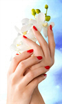 Сlipart Fingernail Manicure Human Hand Nail Polish Beauty Flower   BillionPhotos