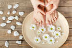 Сlipart leaves barefoot natural rose pedicure photo  BillionPhotos