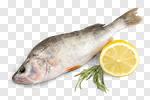 Сlipart Fish Food Lemon Rainbow Trout Freshness photo cut out BillionPhotos