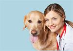 Сlipart veterinarian vet dog pet doctor   BillionPhotos