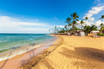 Сlipart mauritius beach sand palm shore photo  BillionPhotos