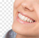 Сlipart Smiling Women Human Mouth Beautiful Beauty photo cut out BillionPhotos