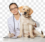 Сlipart veterinarian vet pet dog animal photo cut out BillionPhotos