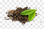 Сlipart Tea Leaf Tea Leaves Green Black photo cut out BillionPhotos