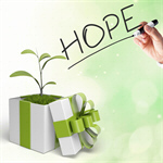 Сlipart Gift Environment Green Environmental Conservation Growth   BillionPhotos