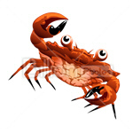 Сlipart Cartoon Shrimp Crab Lobster Animal vector icon cut out BillionPhotos