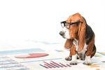 Сlipart dog reading Dog Pets Animal chart   BillionPhotos