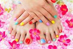 Сlipart hands pedicure flowers foot leaf photo  BillionPhotos
