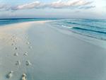 Сlipart beach sand surf water waves photo free BillionPhotos