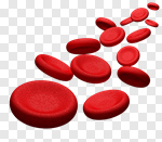 Сlipart Blood Blood Cell Red Blood Cell Red Human Blood Vessel 3d cut out BillionPhotos