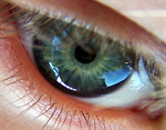 Сlipart Eyeball Biometrics Iris Retina Human Eye photo  BillionPhotos