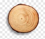 Сlipart Wood Tree Tree Ring Log Tree Stump photo cut out BillionPhotos