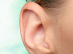 Сlipart Human Ear Listening Sound Sensory Perception Using Senses   BillionPhotos